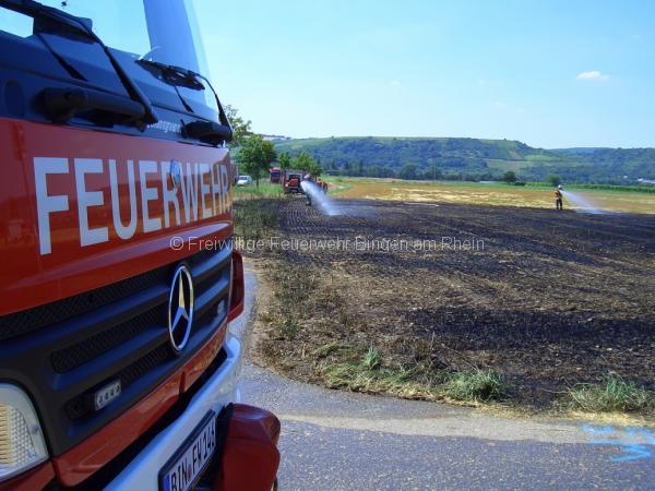 Flaechenbrand-1